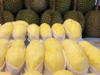 Top 5 Địa chỉ bán sầu riêng ngon và chất lượng nhất ở Hà Nội